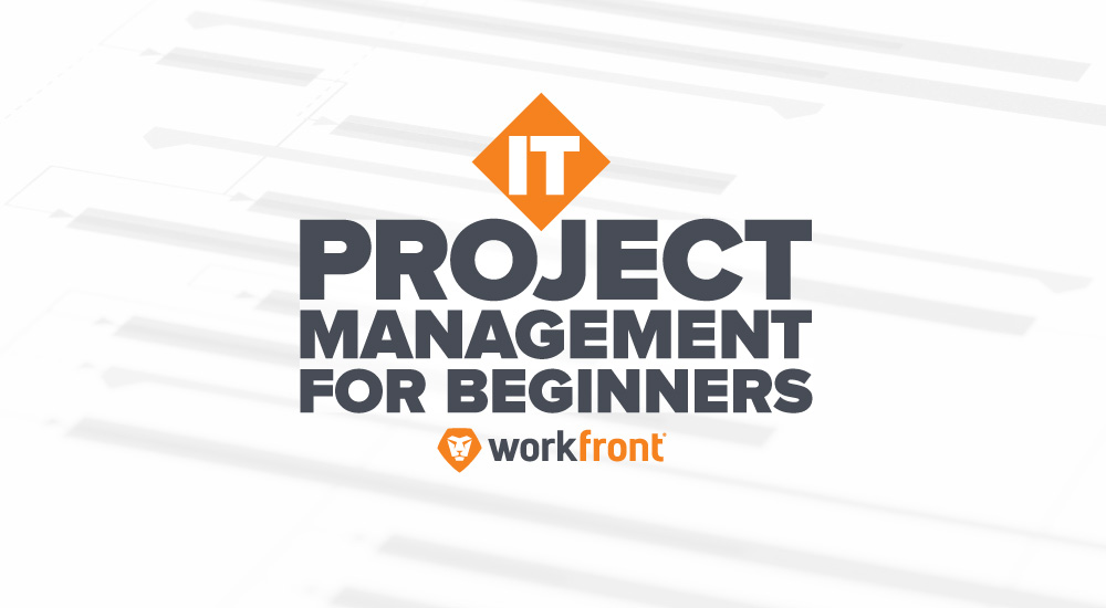 IT Project Management for Beginners