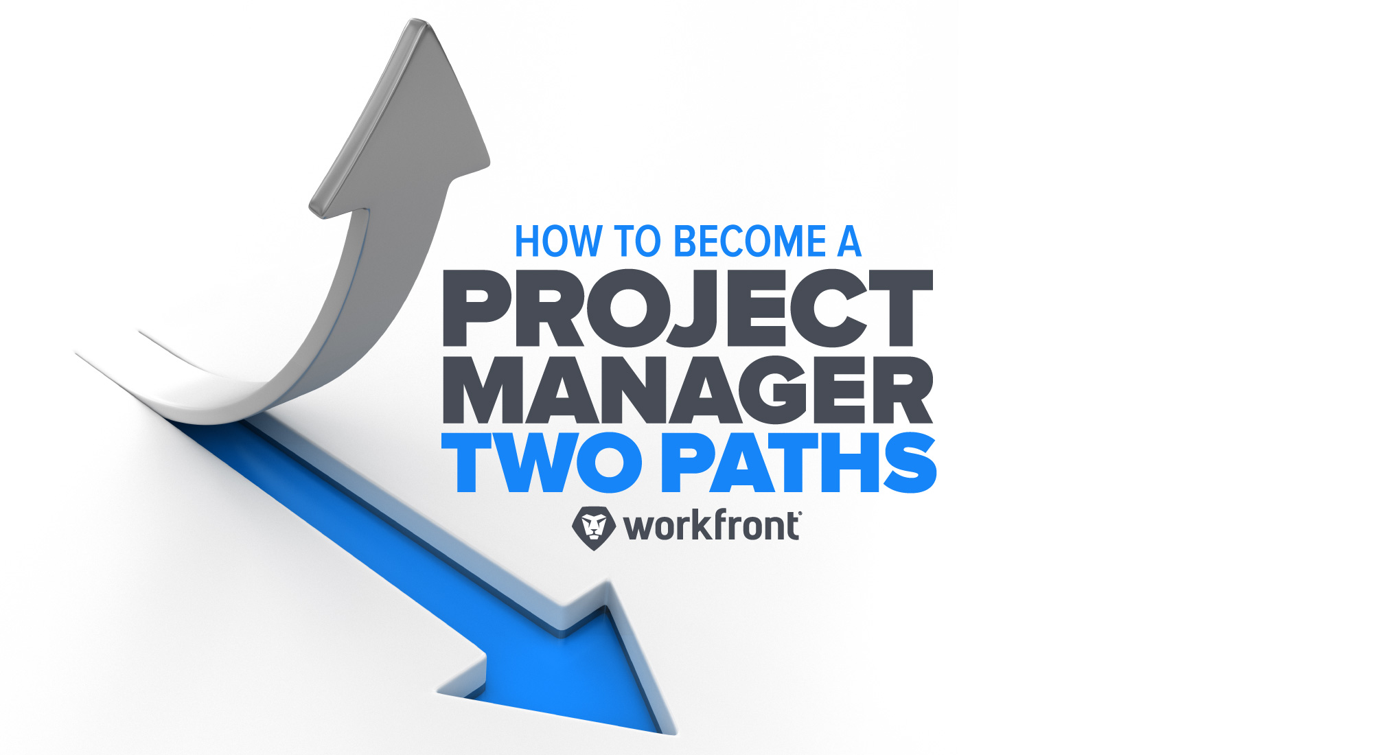 How to Become a Project Manager: Two Paths | Workfront