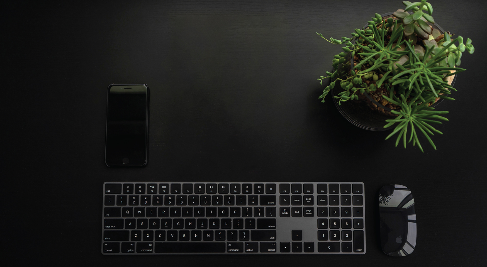 Clean, minimalist desk with just a phone, keyboard, mouse, and plant.