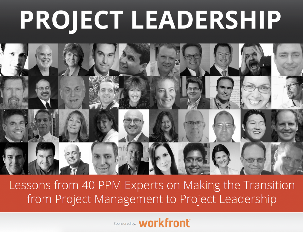 Lessons from 40 PPM Experts on Transitioning to Project Leadership