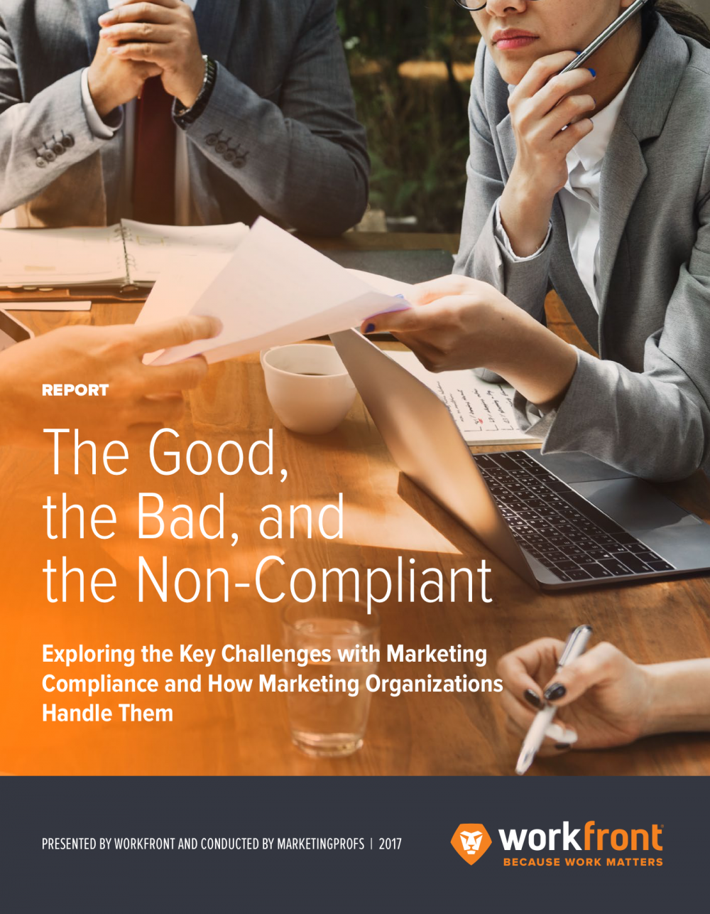 Marketing Compliance Report 2017