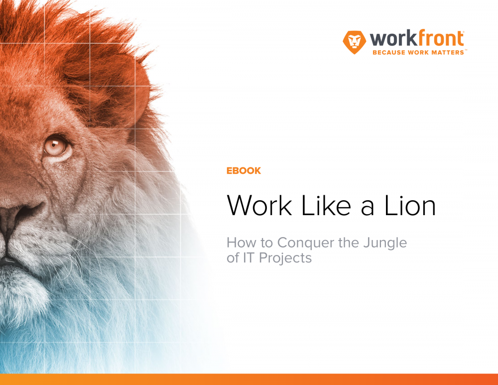 Work Like a Lion: How to Conquer the Jungle of IT Projects
