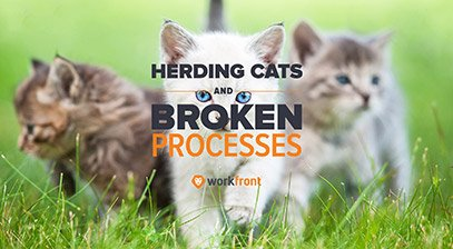 Herding Cats and Broken Processes