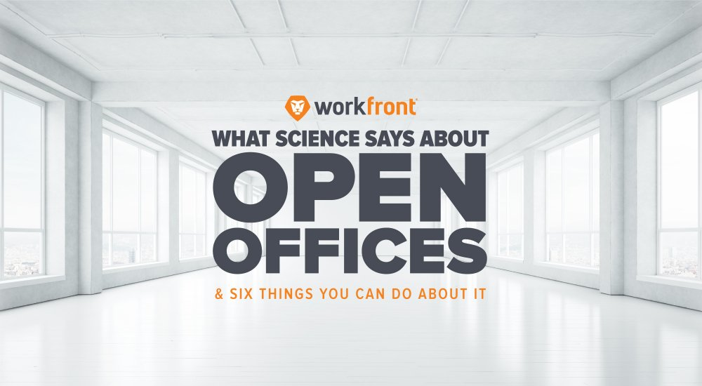 What science says about open offices