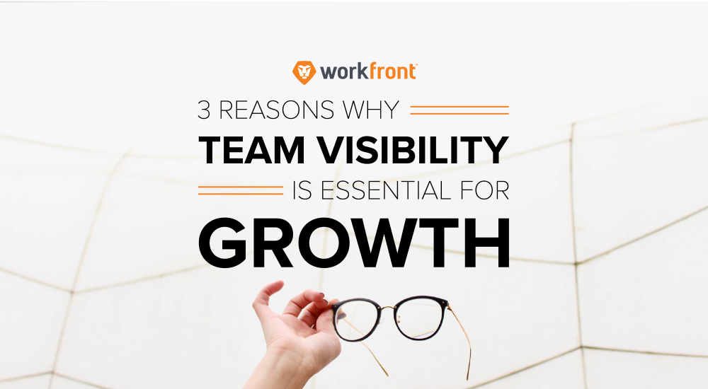 team visibility growth