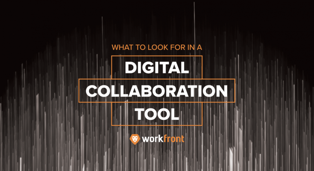 digital collaboration tool