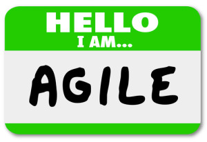 A Beginner's Guide to Agile for Marketing Creative Teams image shutterstock 186484241 300x206
