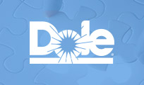 How Dole Fixed Project Management